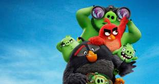Angry Birds : Copains comme cochons photo 3